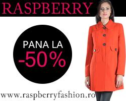 Oferta Black Friday la Raspberry